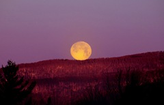 Resting Full Moon - astronomybuff.com